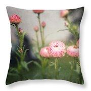 Pink Straw Flowers After A Light Rain Throw Pillow