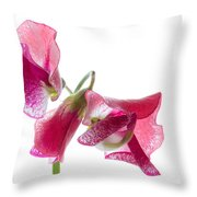 Pink Sweet Pea 2 Throw Pillow