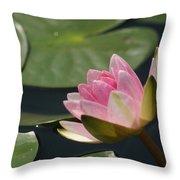 Pink Tilt... Throw Pillow