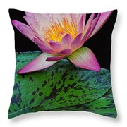 Pink Tipped Beauty Throw Pillow