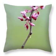 Pink Tree Flower Buds Throw Pillow