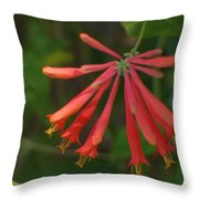 Pink Tube Flower Throw Pillow