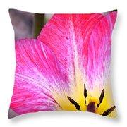 Pink Tulip Macro Throw Pillow