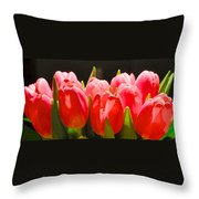 Pink Tulips In A Row Throw Pillow