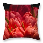 Fucshia Tulips Throw Pillow