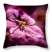 Pink Violet Glory Throw Pillow
