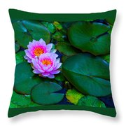 Pink Water Lilies - Lotus Throw Pillow