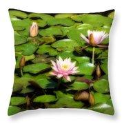 Pink Water Lilies Soft Focus Throw Pillow