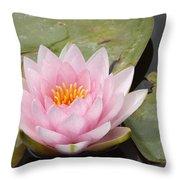 Pink Water Lily And Leaves Throw Pillow