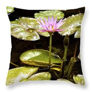 A Waterlily Reflection Throw Pillow