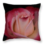 Pink White Rose Throw Pillow