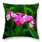 Pink Willie Throw Pillow