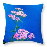 Pink Yarrow Throw Pillow
