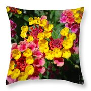 Meadow Melody Throw Pillow