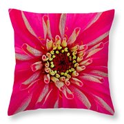 Pinkflow Throw Pillow