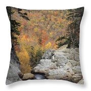 Pinkham Notch - Fm000105 Throw Pillow