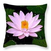 Pinkish Lotus Flower Throw Pillow