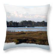 Pinks And Blues Throw Pillow