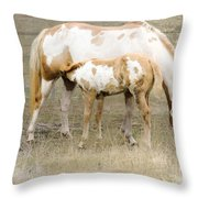 Pinto Mare And Filly Throw Pillow