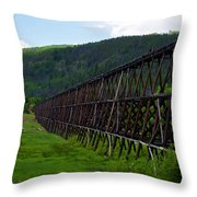 Pipeline Trestle Throw Pillow