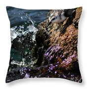 Piper 2 Throw Pillow