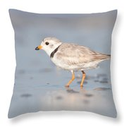 Piping Plover II Throw Pillow