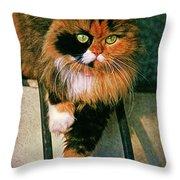 Pirate Kitty Throw Pillow