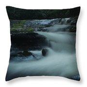 Pisgah National Forest Throw Pillow