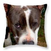 Pit Bull - 2 Throw Pillow