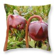 Pitcher Plant Throw Pillow