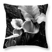 Pitcher Plants Throw Pillow