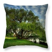 Pithers Willow Throw Pillow