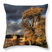 Pittencrieff House Throw Pillow