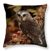 Pixie Saw Whet Owl Watching You Throw Pillow
