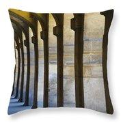 Place Des Vosges Paris, France Throw Pillow