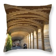 Place Des Vosges Walkway Throw Pillow