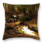 Placer Creek Throw Pillow