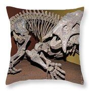 Placerias Fossil Throw Pillow