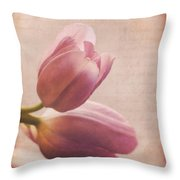 Places In Our Hearts - Vintage Art By Jordan Blackstone Throw Pillow