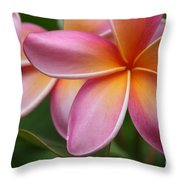 Places Of The Heart Throw Pillow