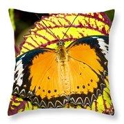 Plain Tiger Butterfly Throw Pillow