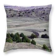 Plains Of Nebraska Throw Pillow