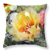 Plains Prickly Pear Flower Throw Pillow