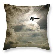 Plane In Flight Throw Pillow
