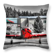 Flying To Lunch In Pacific Northwest Washington  Throw Pillow