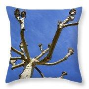 Plane Tree Throw Pillow