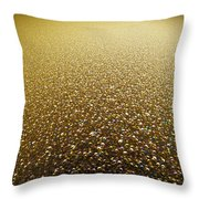 Planet Of Jewels Throw Pillow