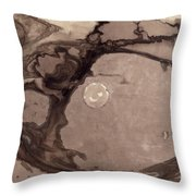 Planets Throw Pillow by Victor Hugo