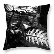 Plant 8658 Throw Pillow