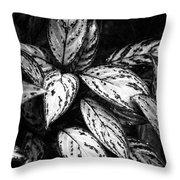 Plant 8659 Throw Pillow